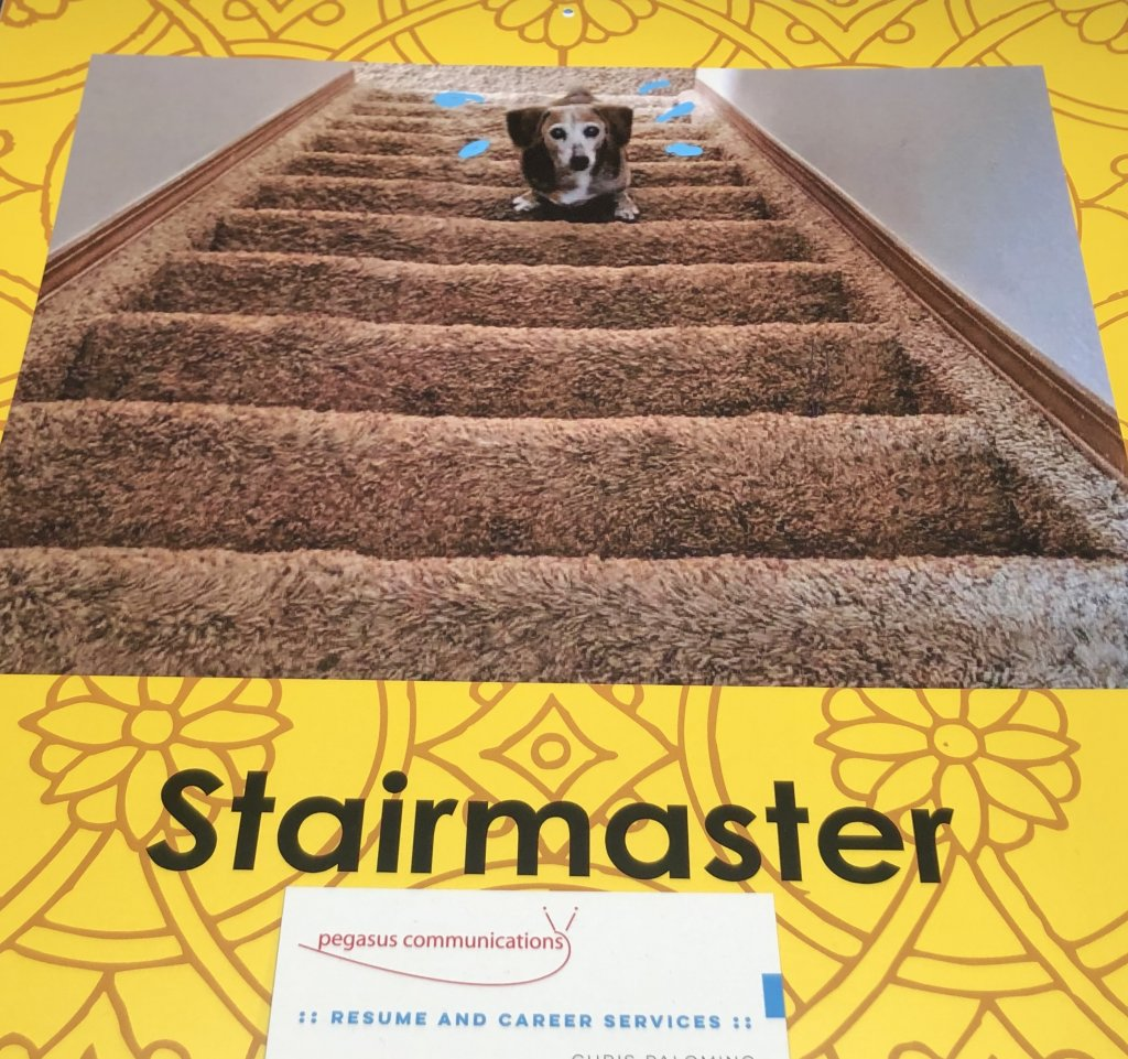 image-857997-lucy.stairs-c51ce.w640.JPG